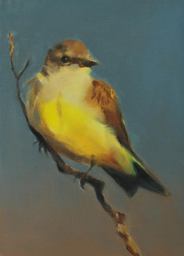 """Kingbird at Sunset (framed)"" original fine art by Pamela Poll"