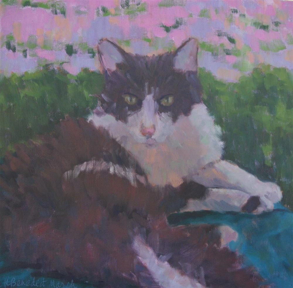 """Yoyo in Repose"" original fine art by Katharine March"
