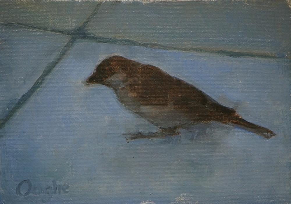 """Sparrow"" original fine art by Angela Ooghe"