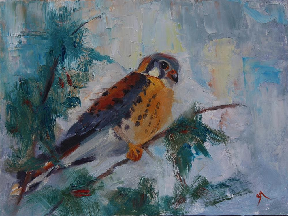 """Kestrel Hi Up"" original fine art by Sheila Marie"