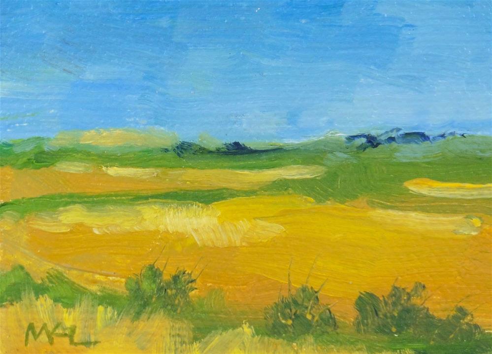 """""""Yolo Causeway Rice Fields I"""" original fine art by Marlene Lee"""