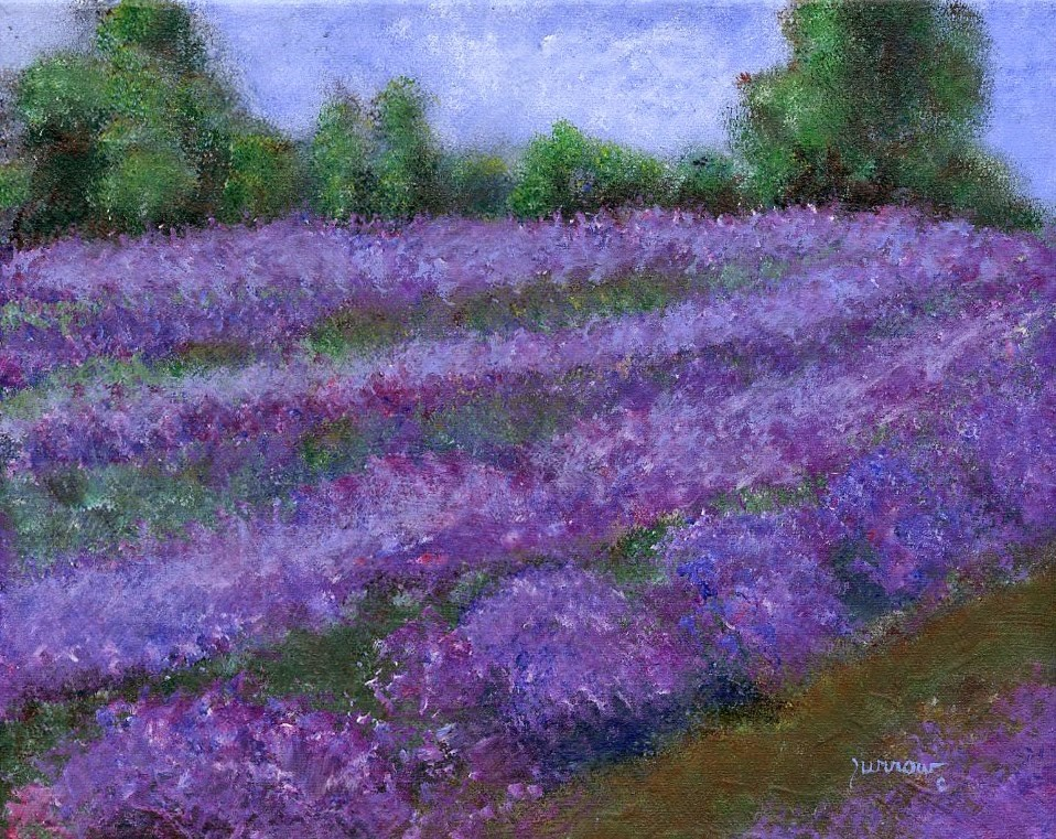 """ORIGINAL LANDSCAPE PAINTING OF EVERGREEN LAVENDER FIELD #2"" original fine art by Sue Furrow"