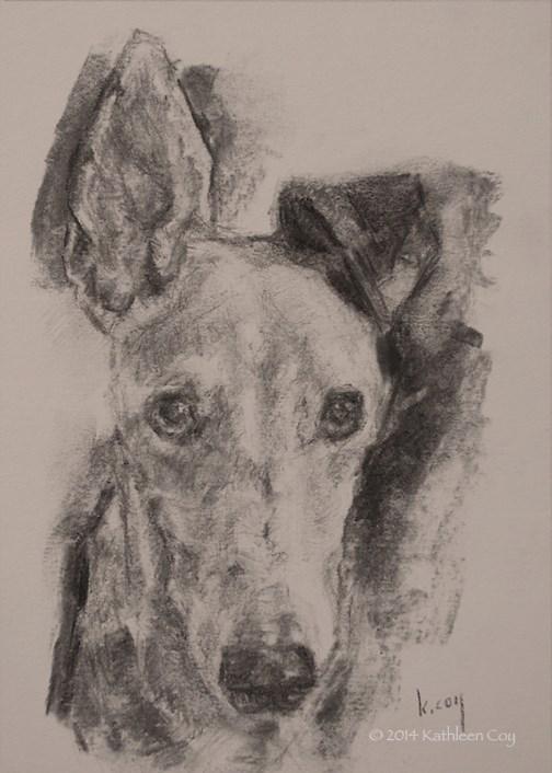 """""""53 - Greyhound"""" original fine art by Kathleen Coy"""