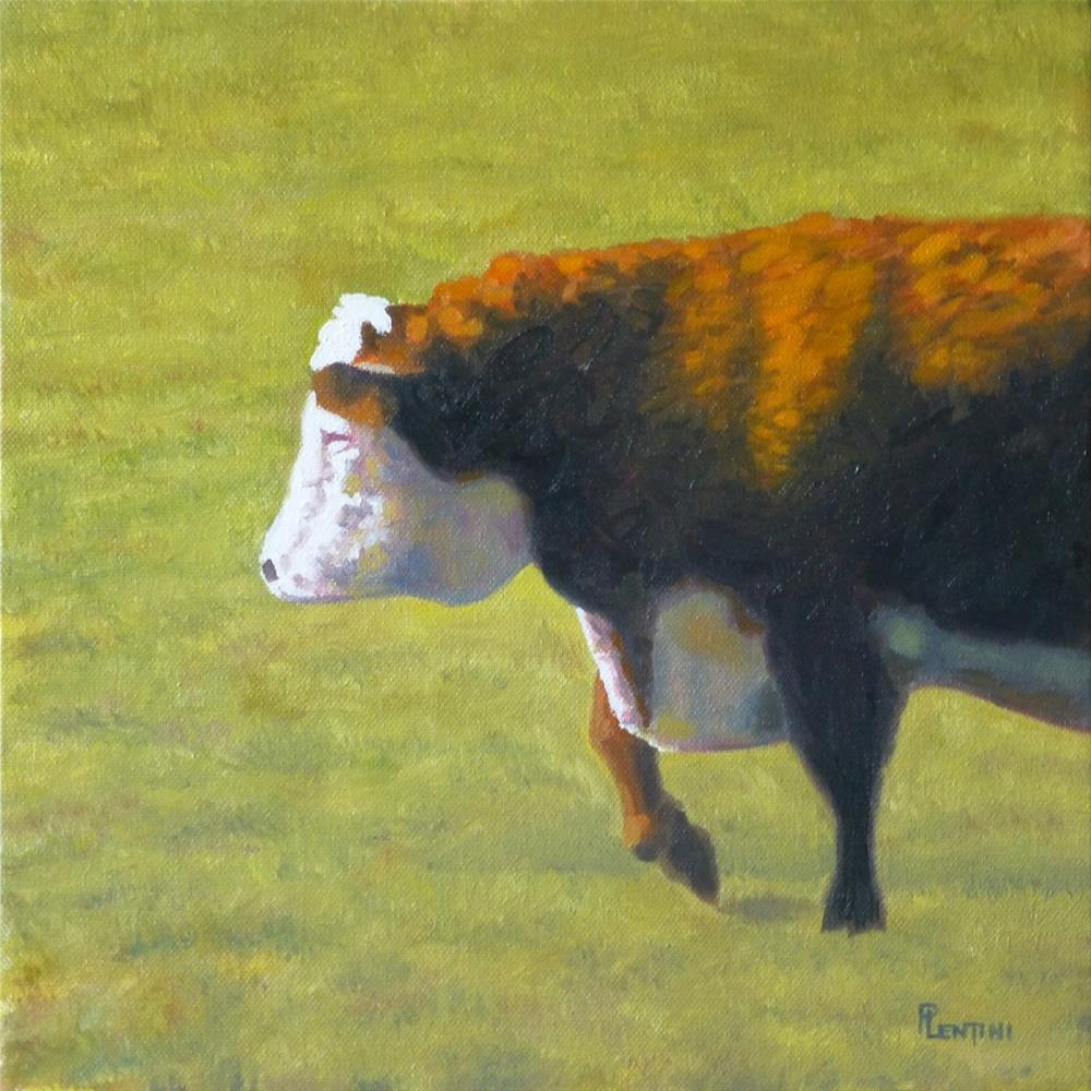 """Cow Series 5 Study 3"" original fine art by Peter Lentini"