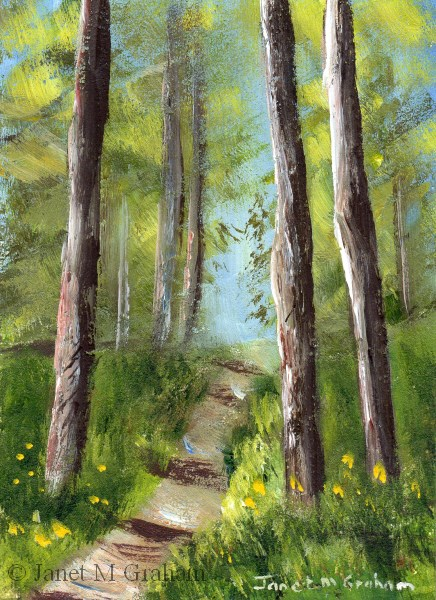 """""""Forest Track ACEO"""" original fine art by Janet Graham"""
