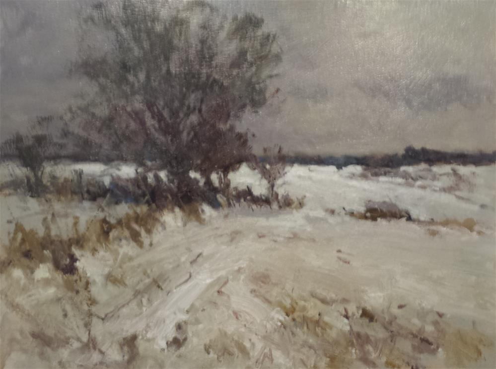 """Winter Landscape- Norfolk"" original fine art by John Shave"