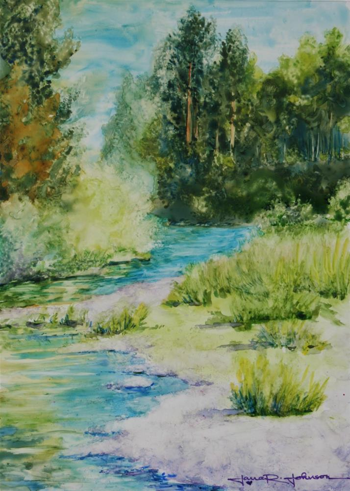 """Calapooia River Trees"" original fine art by Jana Johnson"