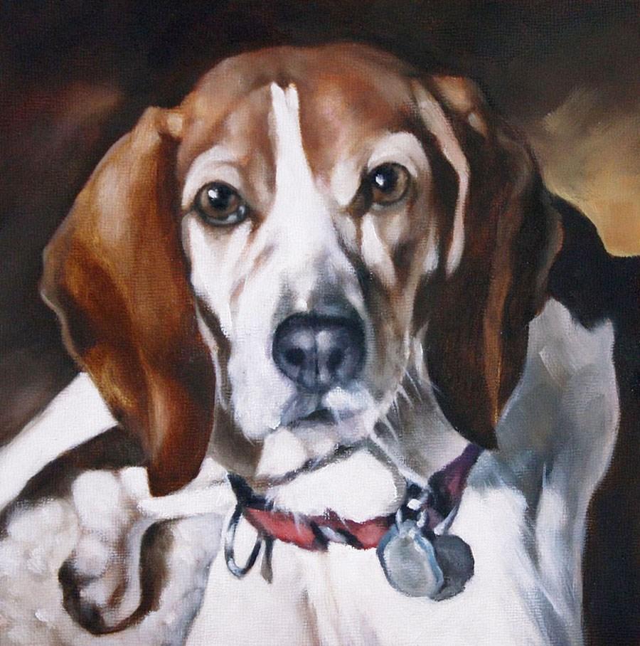"""A Beagle"" original fine art by Carolyn McQuarters"