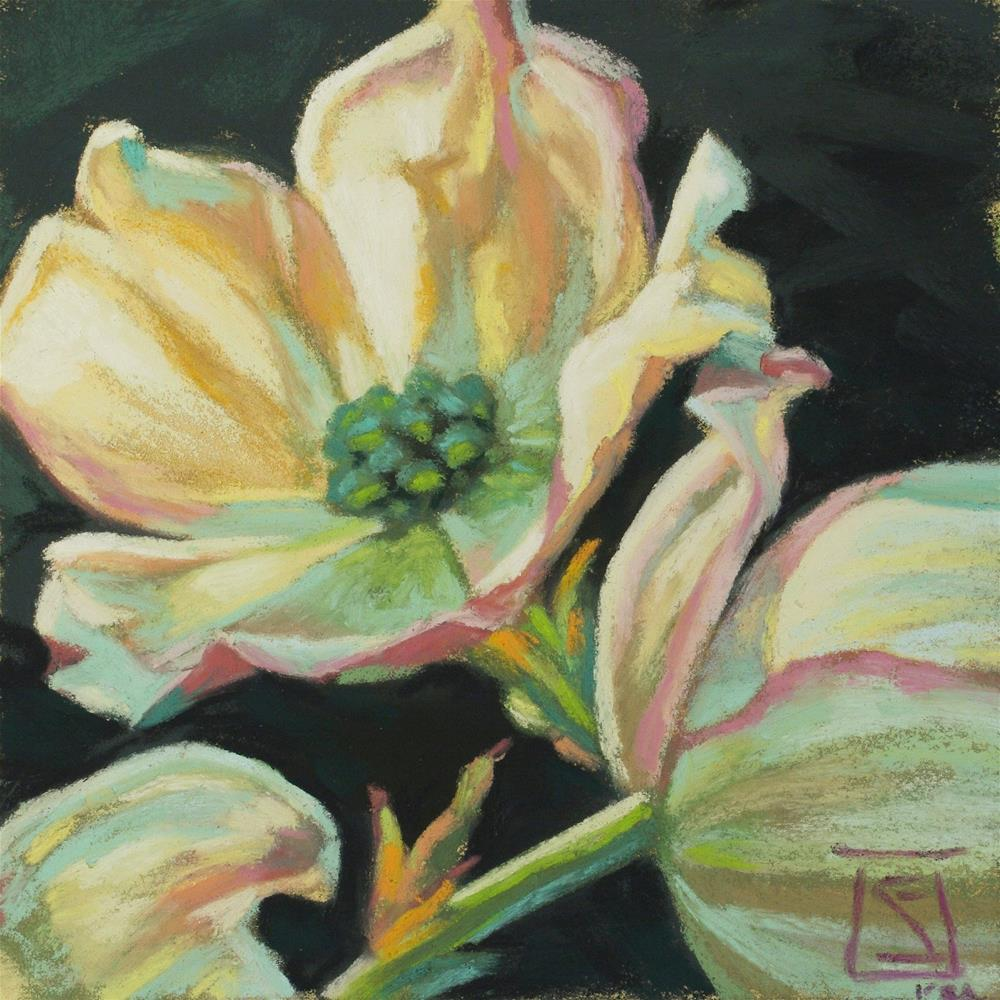 """Dogwood Glow"" original fine art by Sheila Evans"