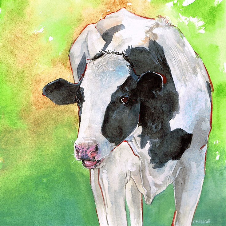 """No. 53 Black and White Cow"" original fine art by Annabel Chance"