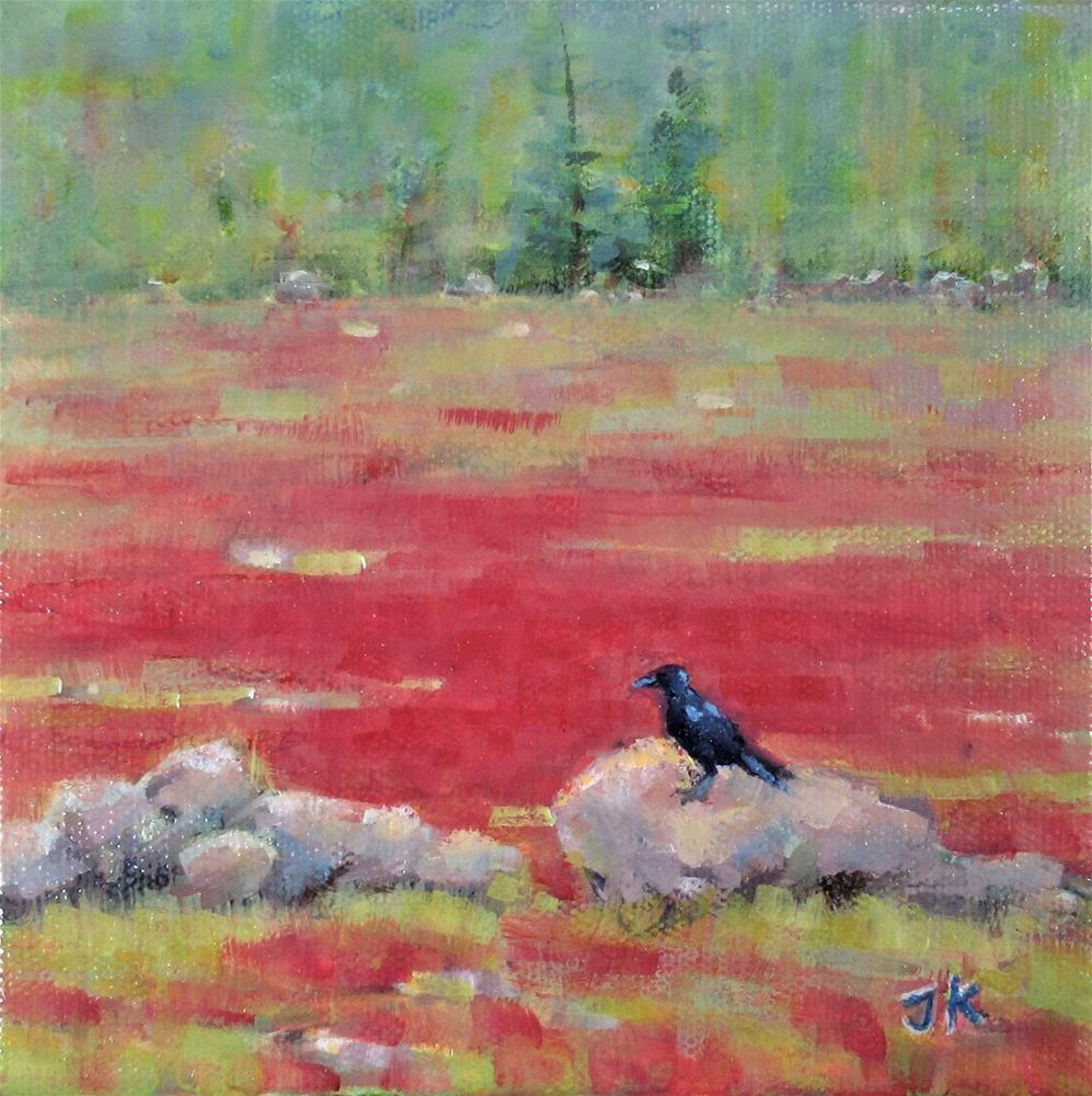 """Blueberry Barrens in Fall"" original fine art by J Kelsey"