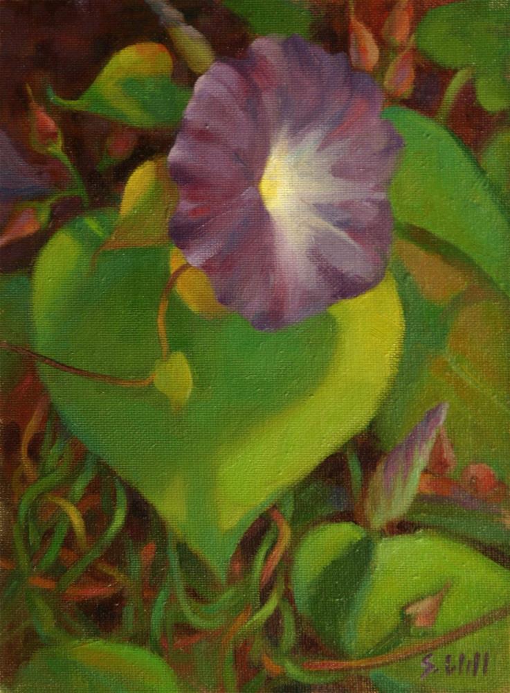 """Morning Glory Study"" original fine art by Sharon Will"