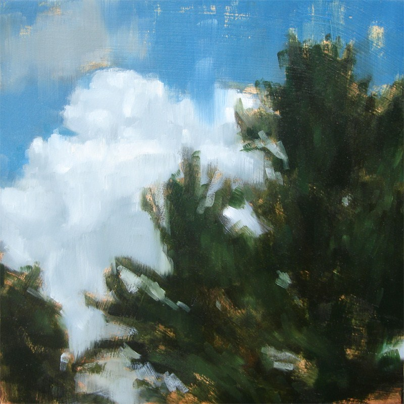 """Lakehouse Clouds, Lake Monomanoc, NH (no.81)"" original fine art by Michael William"