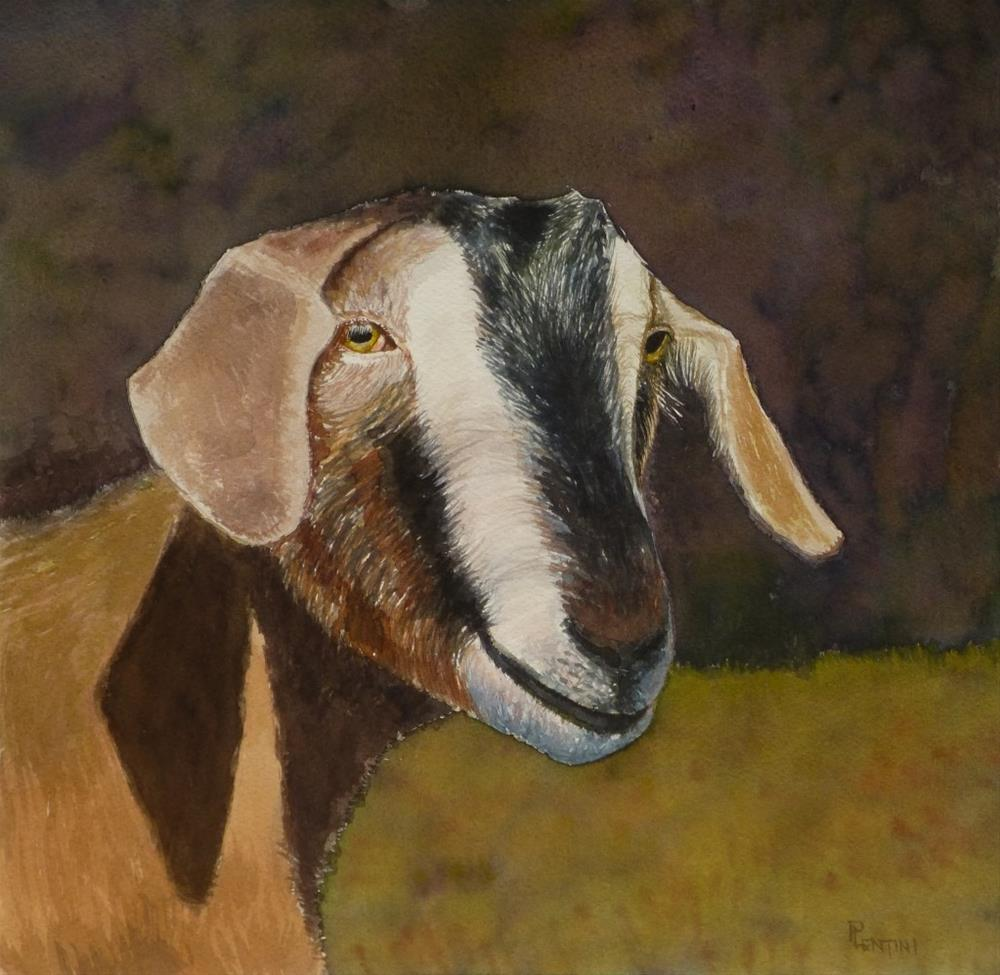 """Bovid: Sei"" original fine art by Peter Lentini"