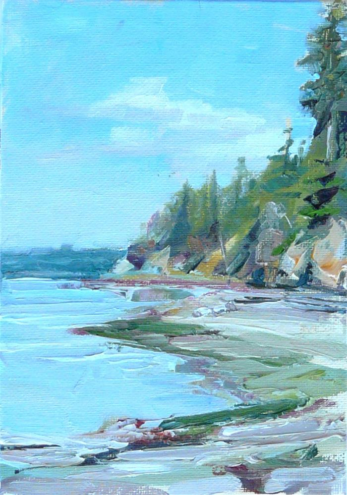 """Camano Island Beach,sea scape,oil on canvas,7x5,price$175"" original fine art by Joy Olney"