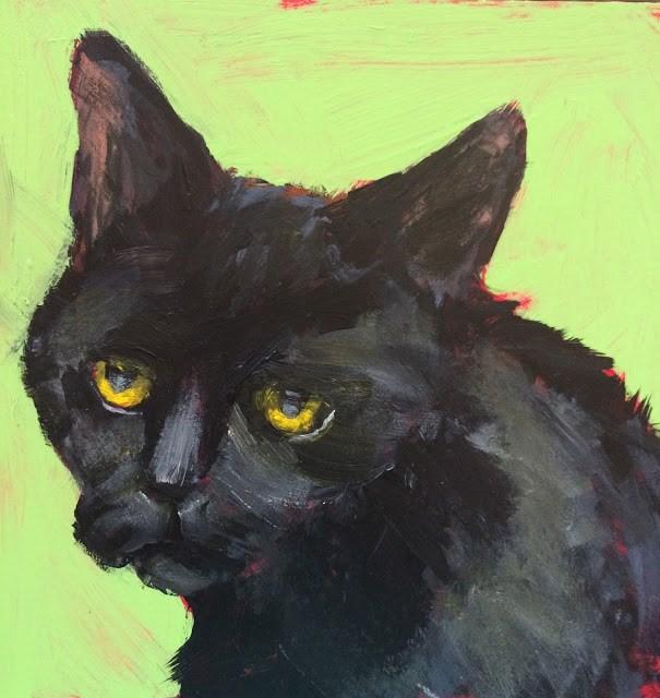 """Shelter Cat, 6x6 in Acrylic by Kelley MacDonald"" original fine art by Kelley MacDonald"