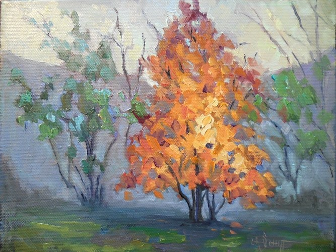"""Daily Painting, Small Oil Painting, Autumn Landscape, Daily Art, Tree on Fire, 8x10x1.5 Oil"" original fine art by Carol Schiff"