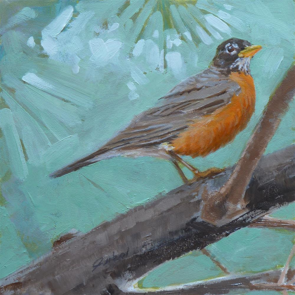 """American Robin Oil (6x6) 2015"" original fine art by Ron Ferkol"