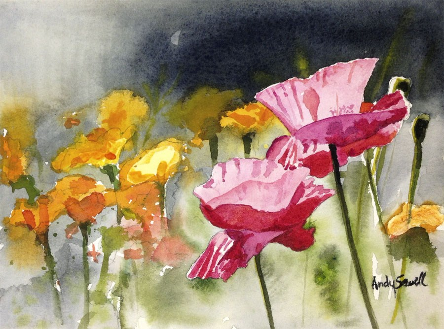 """Poppy Pinks"" original fine art by Andy Sewell"