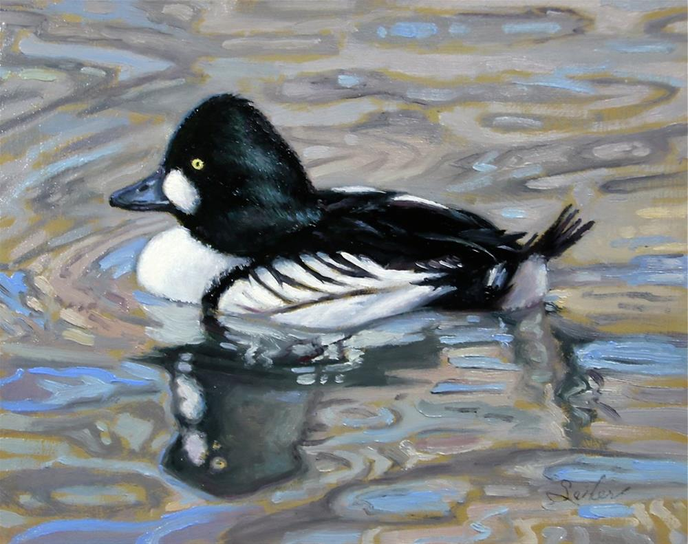 """Resting Goldeneye"" original fine art by Larry Seiler"