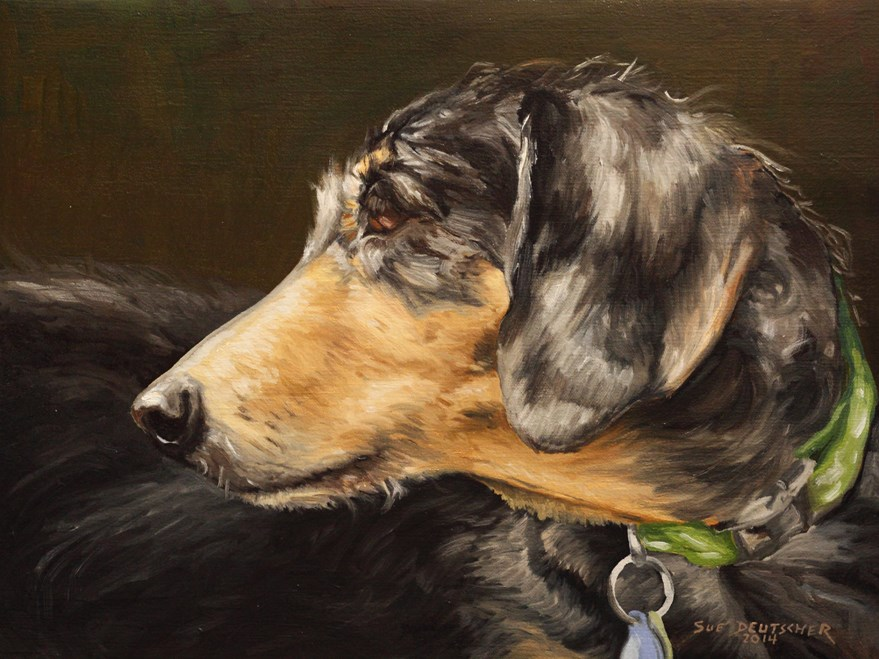 """pet portrait"" original fine art by Sue Deutscher"