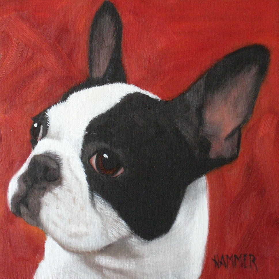 """French Bulldog"" original fine art by Claudia Hammer"