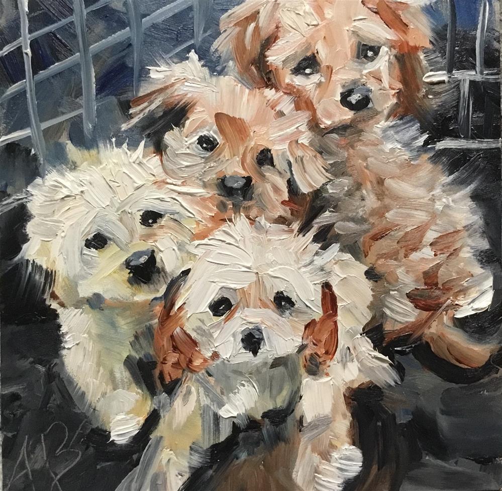 """""""Adoption waiting"""" original fine art by Annette Balesteri"""