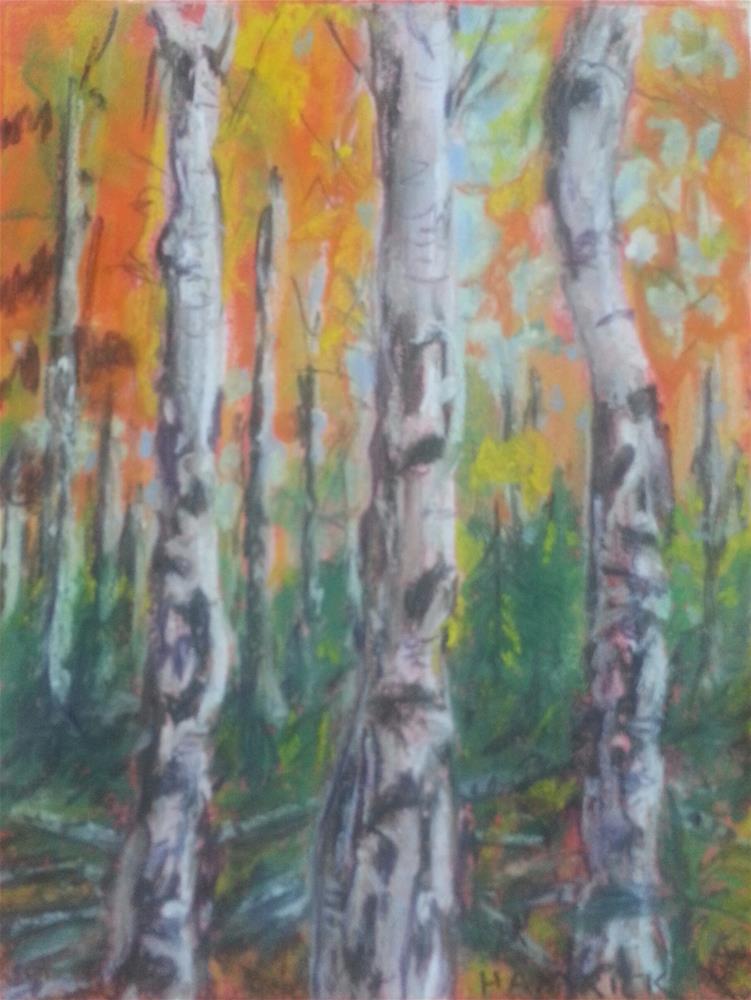 """Among the Aspens"" original fine art by Phyllisha Hamrick"