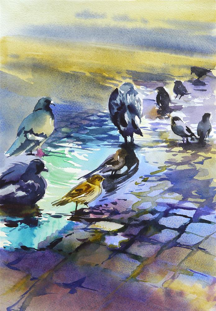 """pigeons and sparrows"" original fine art by Beata Musial-Tomaszewska"