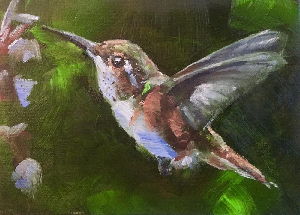 """Rufous"" original fine art by Gary Bruton"