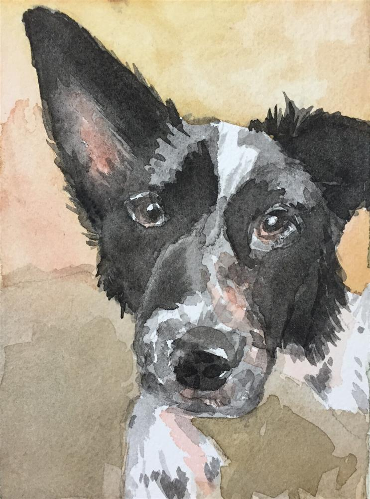 """Finley, Close up"" original fine art by Cindy McDonough"