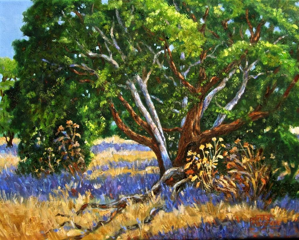"""Old Oak at the Annex"" original fine art by Patricia Musgrave"