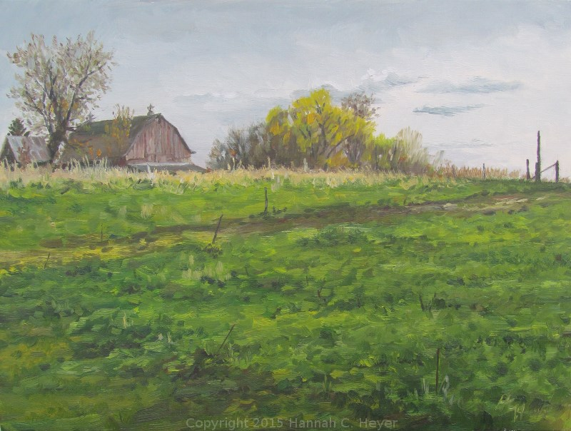 """Green Pastures"" original fine art by Hannah C. Heyer"
