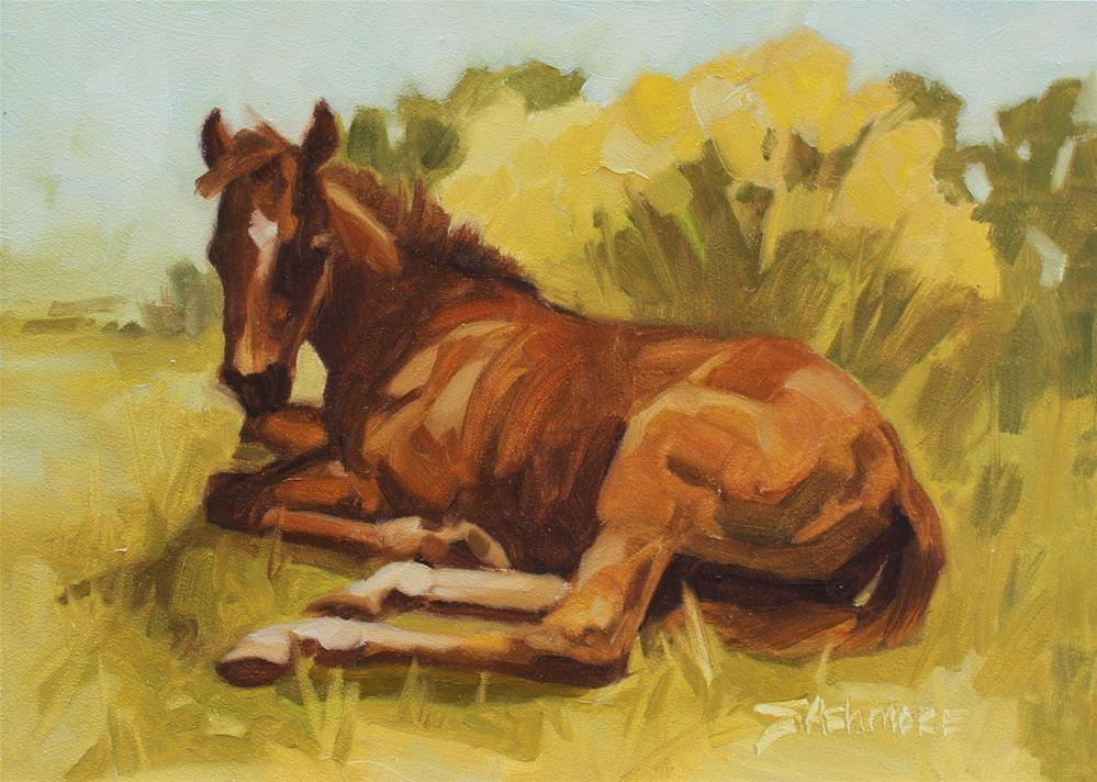 """Meadow Foal"" original fine art by Susan Ashmore"