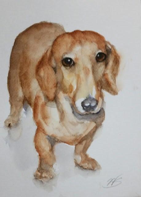 """""""Little Doxie"""" original fine art by Wendy Starita"""
