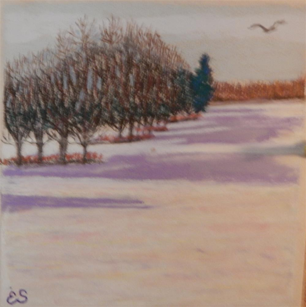 """Snow Shadows"" original fine art by Elaine Shortall"