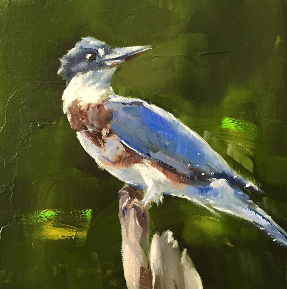 """Kingfisher"" original fine art by Gary Bruton"