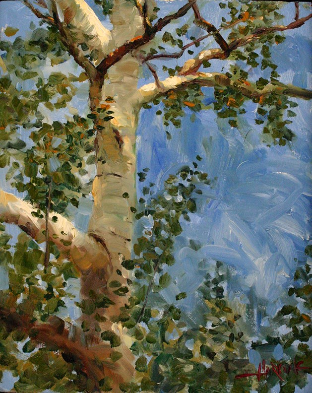 """Sycamore"" original fine art by Scott Harding"