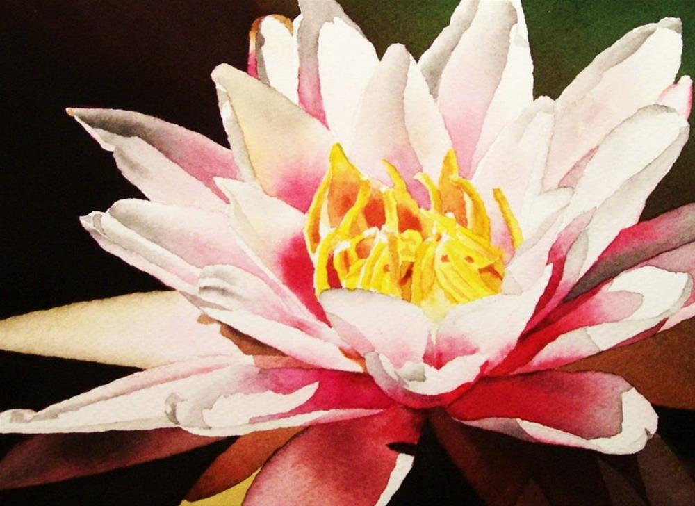 """Waterlily with Yellow Center"" original fine art by Jacqueline Gnott, whs"