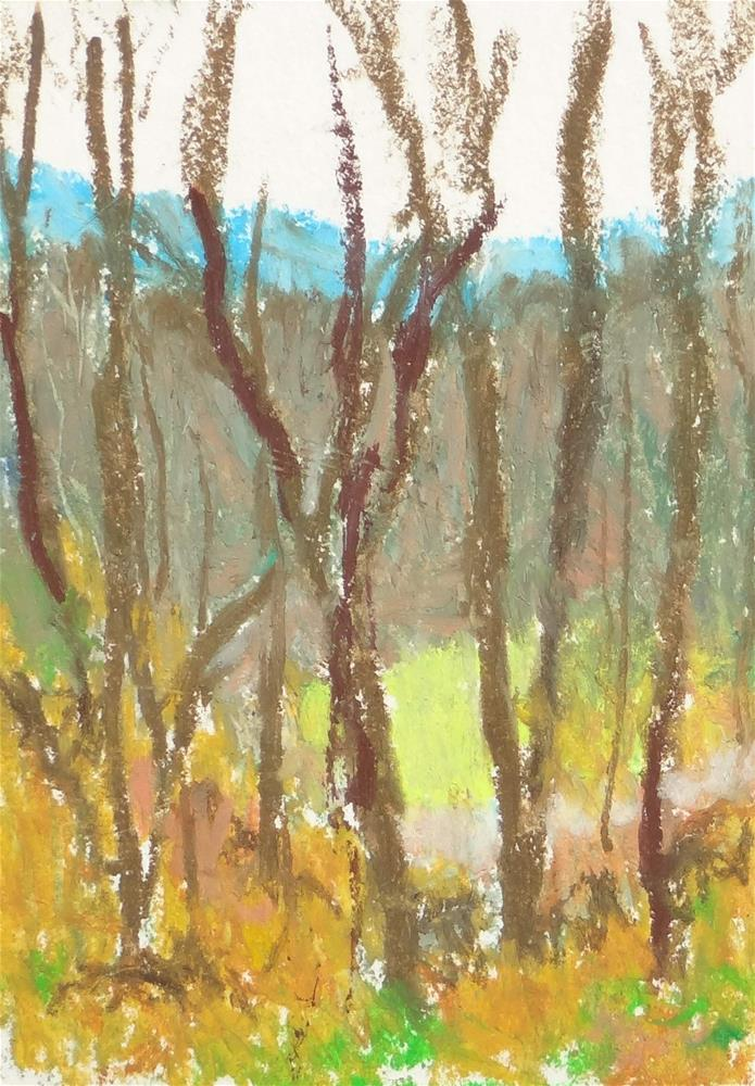 """Patch of Green"" original fine art by Meredith Adler"