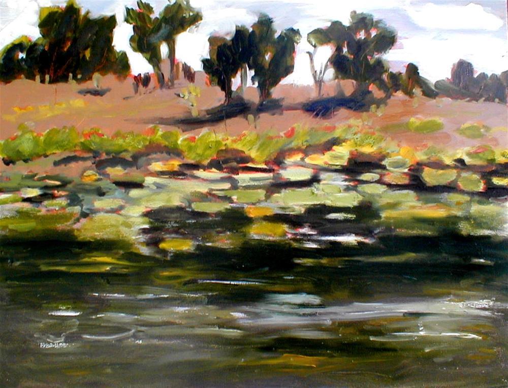 """Cairns Pond"" original fine art by Carol Cochran"