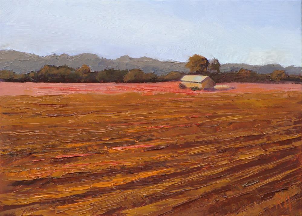 """Gathered"" original fine art by Rebecca Helton"