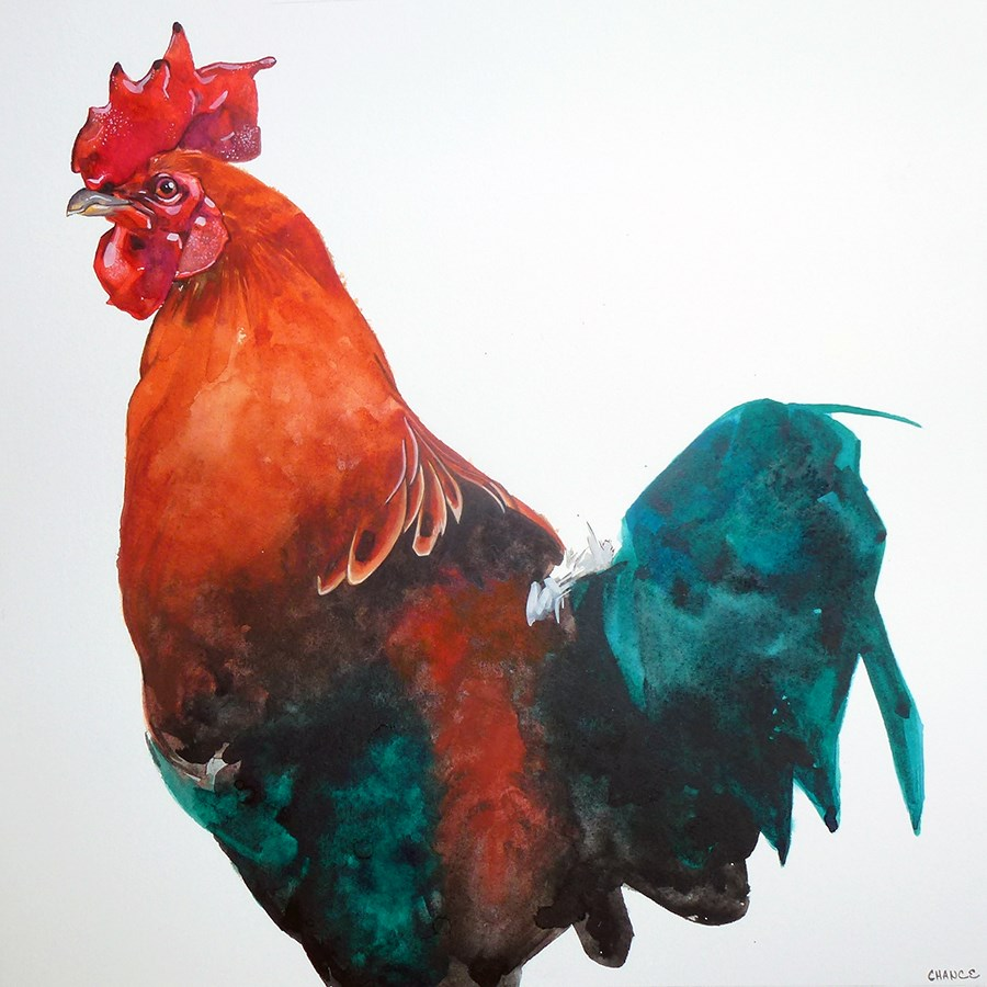 """Rooster"" original fine art by Annabel Chance"