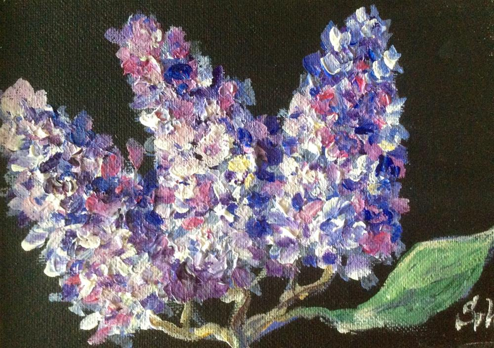 """Lilacs on black"" original fine art by Sonia von Walter"