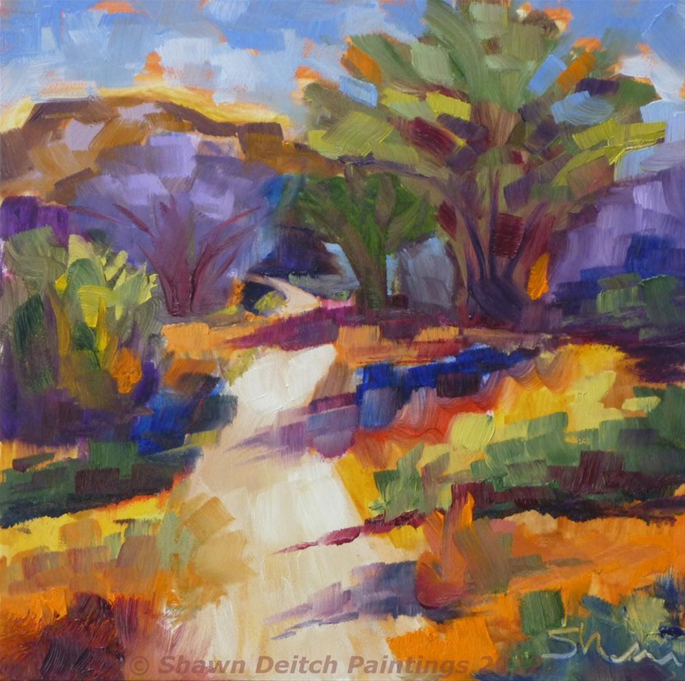 """Dove Mountain Path"" original fine art by Shawn Deitch"