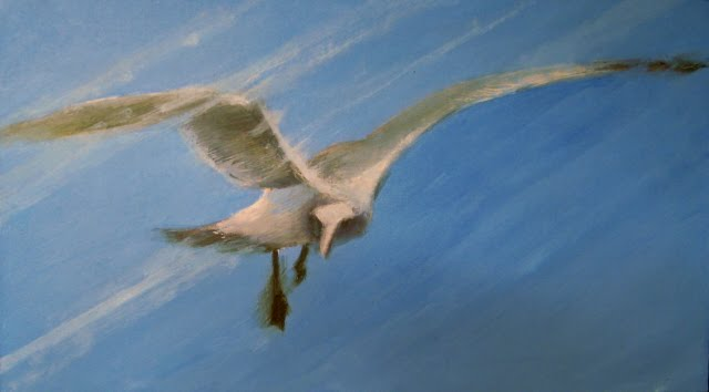 """""""Easy Pickins  seagull in flight oil painting"""" original fine art by Robin Weiss"""