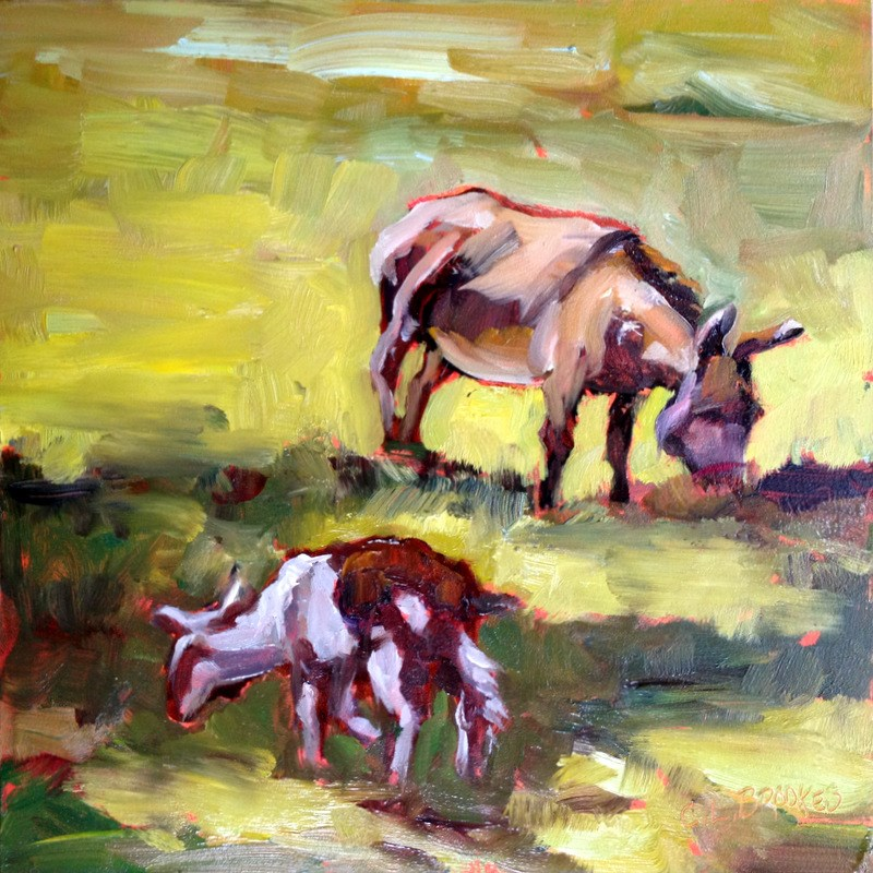 """Sharing the Pasture, Day 11"" original fine art by Claudia L Brookes"