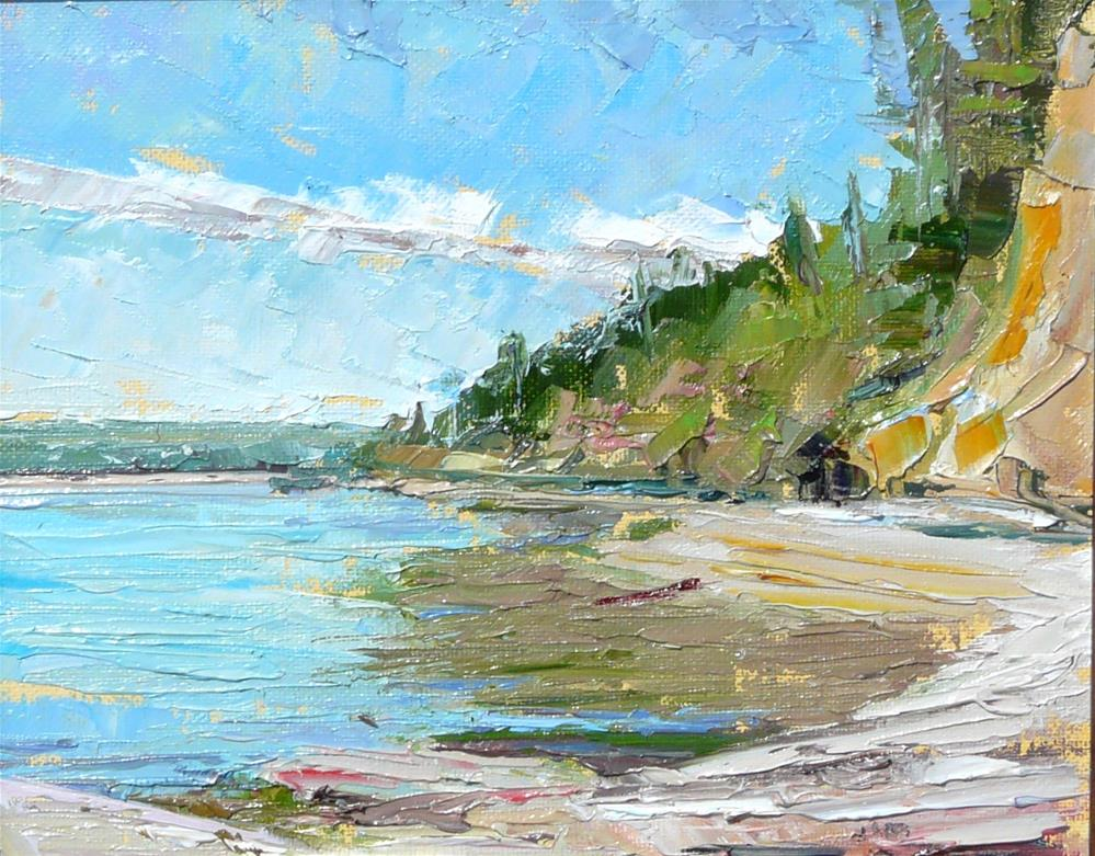 """Beach at State Park,seascape,oil on canvas,8x10,price$250"" original fine art by Joy Olney"