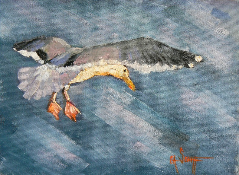 """Daily Painting, Seagull, Original Oil, 6x8  Johnathan Livingston"" original fine art by Carol Schiff"
