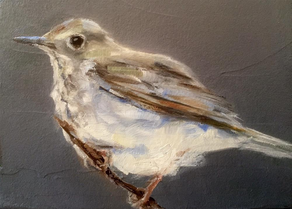 """Gray Bird"" original fine art by Gary Bruton"